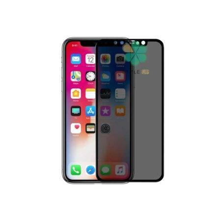خرید گلس پرایوسی نیلکین گوشی آیفون Apple iPhone X / XS مدل AP+ Max