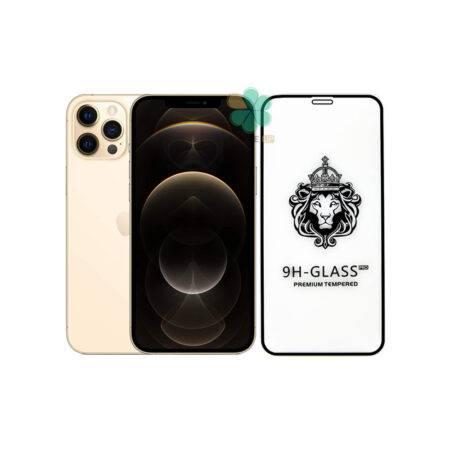 خرید گلس گوشی اپل آیفون Apple iPhone 12 Pro مدل CASSIEY