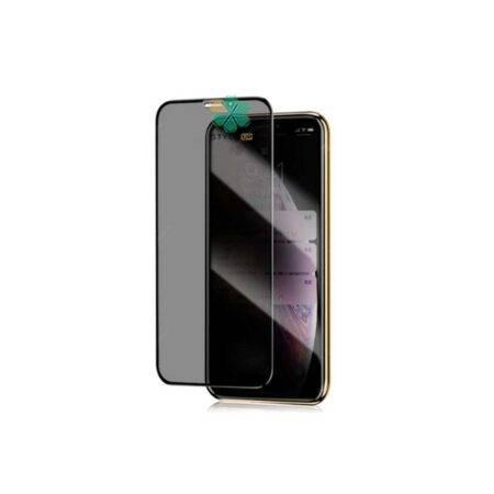 خرید محافظ گلس پرایوسی گوشی آیفون Apple iPhone 12 Pro Max