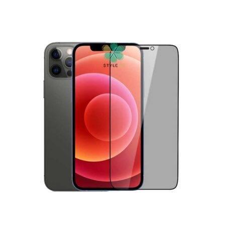 خرید گلس پرایوسی نیلکین گوشی ایفون iPhone 12 Pro مدل Amazing Guardian