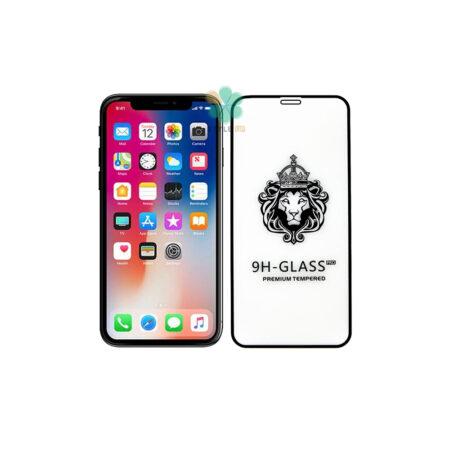 خرید گلس گوشی اپل آیفون Apple iPhone X / XS مدل CASSIEY