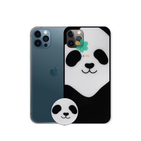 خرید گارد گوشی اپل آیفون Apple iPhone 12 Pro Max مدل پاندیکس