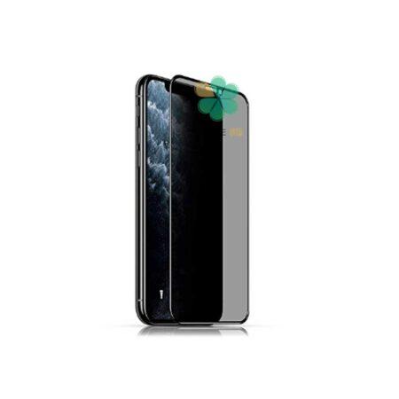 خرید پک دوتایی محافظ صفحه حریم شخصی بیسوس گوشی آیفون iPhone 11