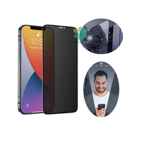 خرید پک دوتایی محافظ صفحه حریم شخصی بیسوس گوشی آیفون iPhone 12 Pro