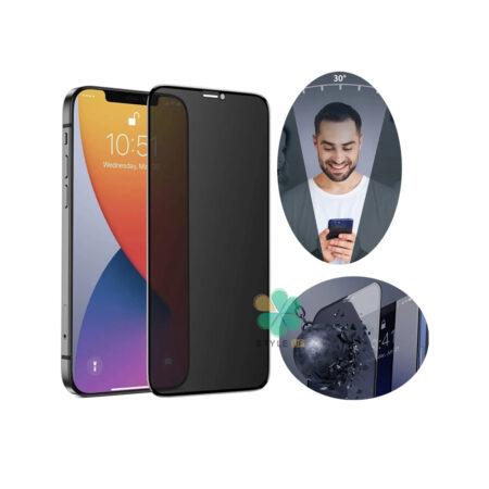 خرید پک دوتایی محافظ صفحه حریم شخصی بیسوس گوشی اپل iPhone 12 Pro Max