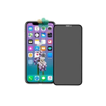 خرید پک دوتایی محافظ صفحه حریم شخصی بیسوس گوشی آیفون iPhone XR