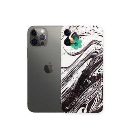 خرید قاب گوشی اپل آیفون Apple iPhone 12 Pro Max طرح داوینچی