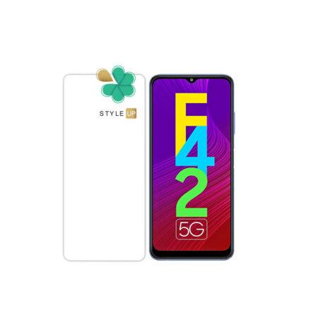 خرید محافظ صفحه گلس گوشی سامسونگ Samsung Galaxy F42 5G